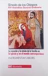 Vocación y la misión de la familia en la Iglesia y en el mundo contemporáneo, La: Instrumentum laboris