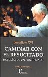 Caminar con el Resucitado: homilías de un Pontificado