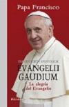 Exhortación apostólica Evangelii Gaudium: la alegría del Evangelio